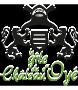 logo gîte du château d'oyé